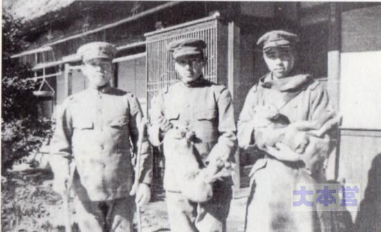 アンゴラ兎と兵隊