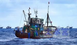 2014.09小笠原で珊瑚密漁する支那漁船