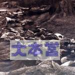 東京大空襲 石川光陽9