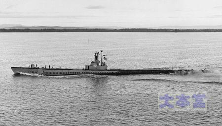 パラオ級シードッグ(バーニー作戦旗艦)