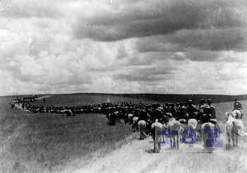 ノモンハンへ進撃するモンゴル騎兵