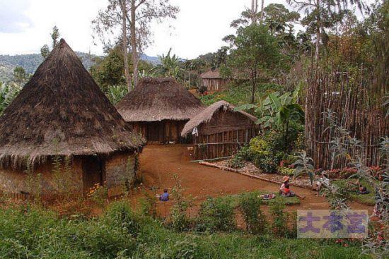 ニューギニアの村