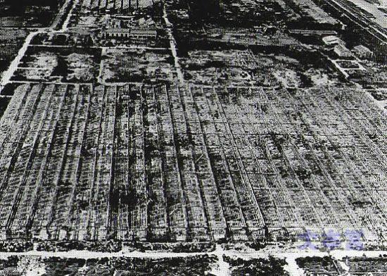 三菱の大幸工場の爆撃被害