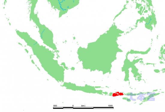 スンバワ島の位置