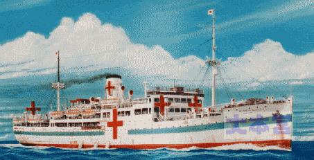 病院船ぶゑのすあいれす丸