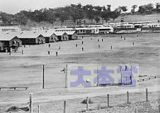 カウラ収容所で野球を楽しむ日本軍捕虜