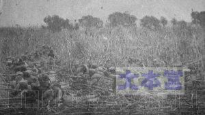匍匐(ほふく)前進で進む歩兵第45連隊の兵士